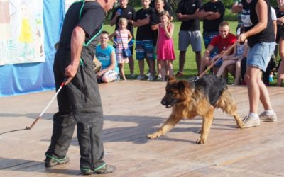 Pokaz szkolenia psów -Kobyle
